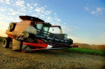 Soybean harvest october