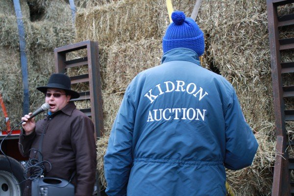 kidron-hay-auction-2