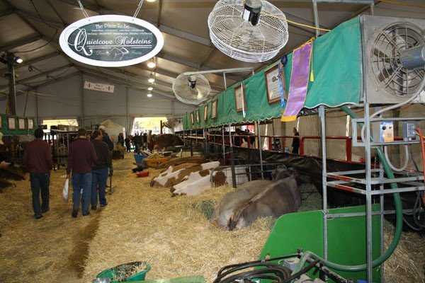 quietcove-farms