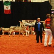 word-dairy-expo-judges