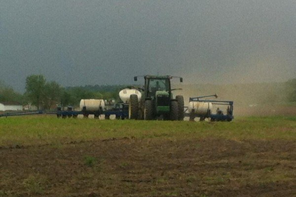 Bonham Farm's trying to beat the rain.