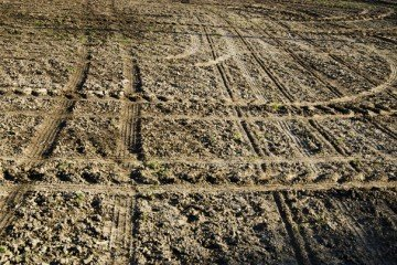 farm land at planting