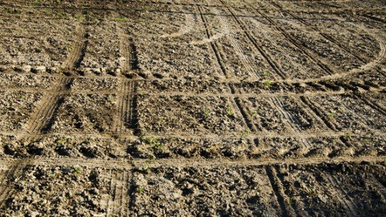 farm land at planting