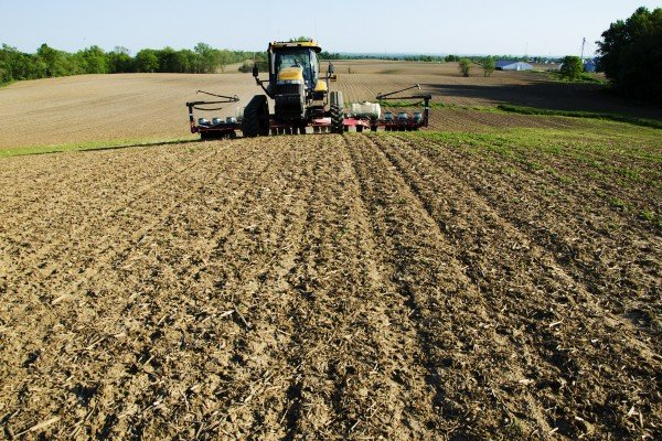 Planting corn on the Landis hill farm in Fairfield County on May 14.