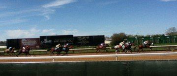 Horses racing is combined with a casino at ThistleDown Racino, Ohio's newest horse racing track to add a casino.