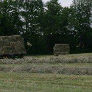 hay wagon 4