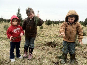 "The Reese grandchildren often ""help"" with planting Christmas trees, but are still too young to do many tasks on the farm."