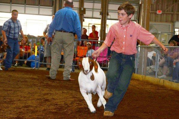 Coby Frey, 10, Wyandot County