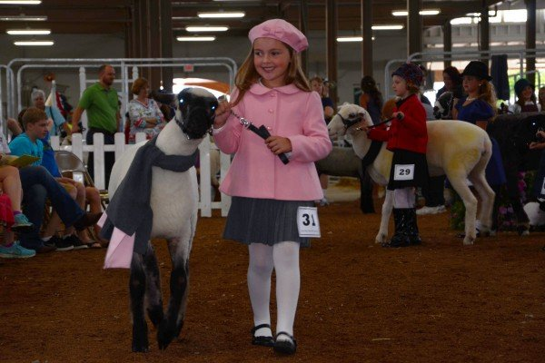 Sadie Moore, from Fairfield County, in the Guys and Gals Sheep Lead.