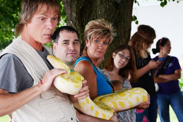 The folks at Snakes Alive teamed up with some Fair visitors to hold this four-year-old Burmese Python that is 12 feet long. It may grow to 20 feet in length.