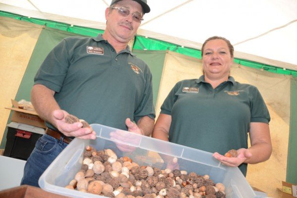 Rick and Vicki Rusmisel, with the Ohio Nut Growers Association hold the nine different types of nuts that grow in Ohio.