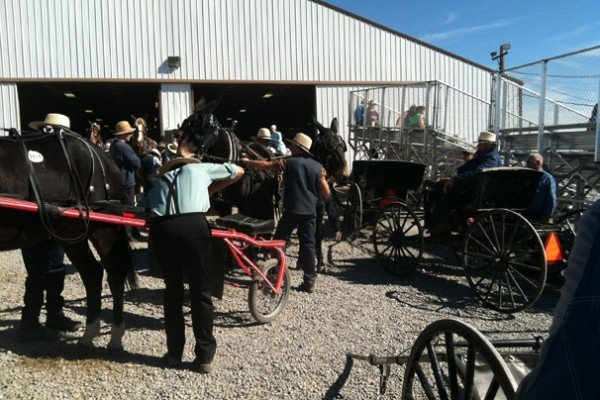 Horse, people and buggies crowded the entire property where the sale is held.