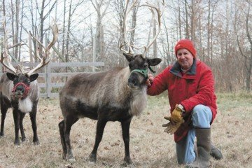 Dan Downs owns Pine Acres Reindeer Farm in Marion County that is home to 6 reindeer.