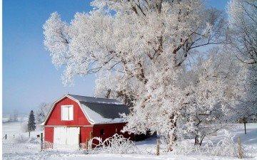 FrostyTreeFRLDJ13_p8-640x400