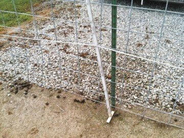 This my unique method of reusing supplies I have on hand to electrify my traditional livestock fencing system. It my not be pretty, but it keeps the horses off the fence and adds extra security to my fencing system.