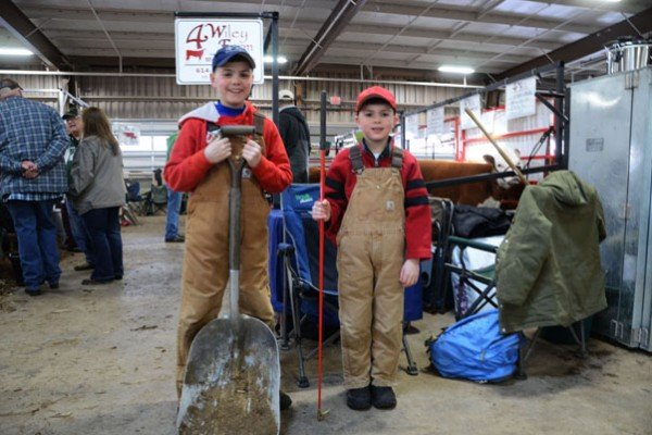 Isaac Wiley, 11, and Walker Wiley, 8, were hard at work in the barn getting ready for the Miniature Hereford show. They are from Wiley Farms in Mt. Vernon.