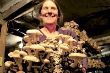 Mushroom production has been a popular component of the farm offerings for CSA customers.