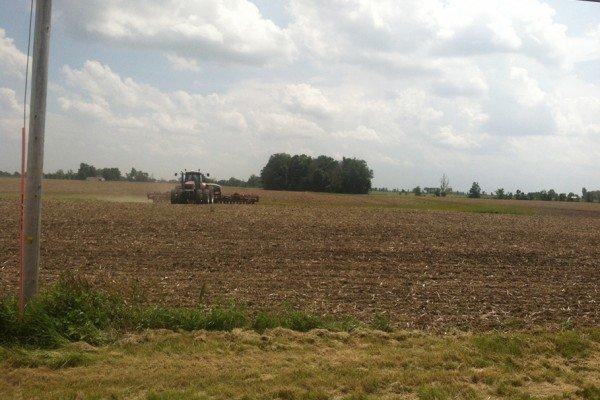 Planting east of Kenton