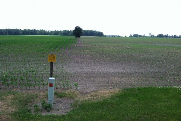 Fields in Marion County