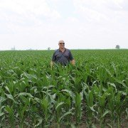 Paulding County corn (Pictured: Bart Johnson for height reference)