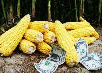 $3 corn2