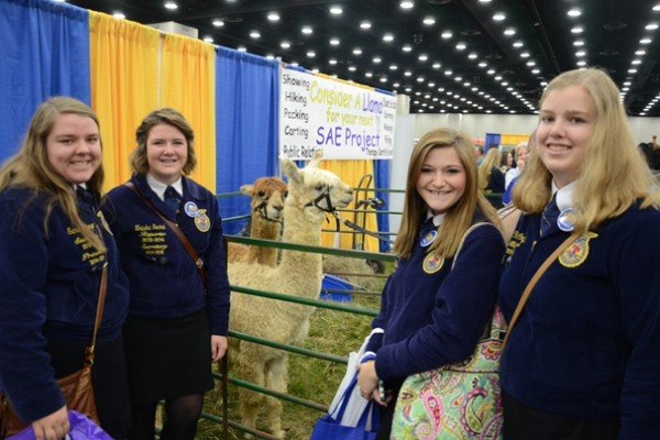 Sarah Longo, Trisha Seckel, Amber Ulsh, and Christie Long, from the River Valley Chapter, stopped by to see the llamas in the trade show.