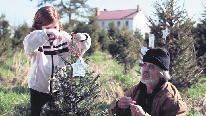 movie magic on an ohio christmas tree farm ohio ag net ohios country journal - Christmas Magic Movie