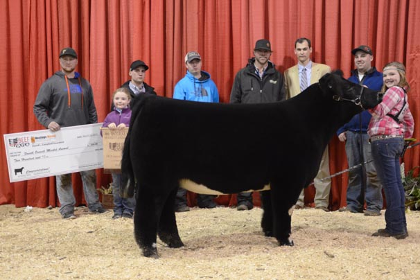 Fourth Overall Market Animal: Montana Hulsmeyer, Auglaize County