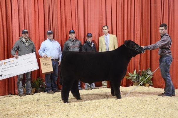 Fifth Overall Market Animal: Tyler Clark, Miami County