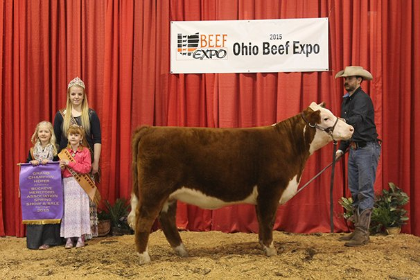 Grand Champion Hereford Heifer Holleys Land & Cattle, Gibsonburg – Holleys I Want Candy 6-4-14