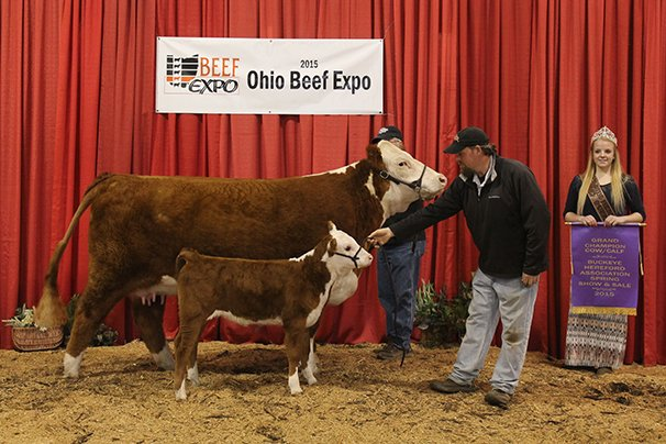 Grand Champion Hereford Cow/Calf Oak Ledge Farm, Belmont, NH – KEB BALI Bailout 144U ET 11-4-12