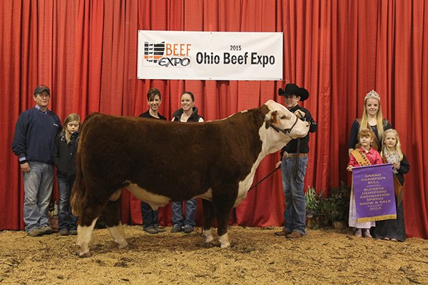 Grand Champion Hereford Bull Dunn Herefords, Cochronton – WD 719T Sharp Dressed Man 3256 12-2-13