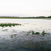 Darke County flooding after 5.1 inches of rain. Photo by Scott Labig.