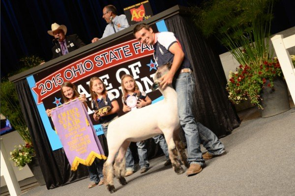 The 2015 Reserve Champion Market Lamb was exhibited by Logan Harvel, Fayette County, and sold to Kroger for $23,000.