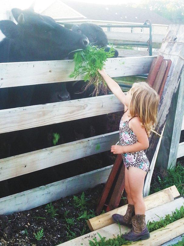 Farm and Fair Photo Contest Winner copy