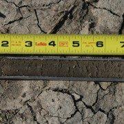 Soil sample