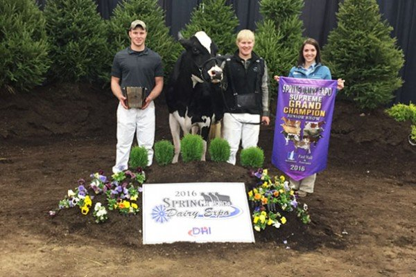 Congrats to Kyle and Chris Ackley from Ackley Farms for winning Supreme Grand Champion Cow