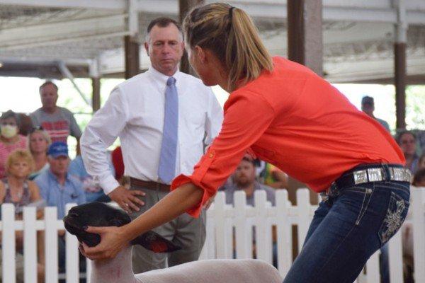Brylee Harder, 18, Galia Co. walks her Grade market lamb for the judge