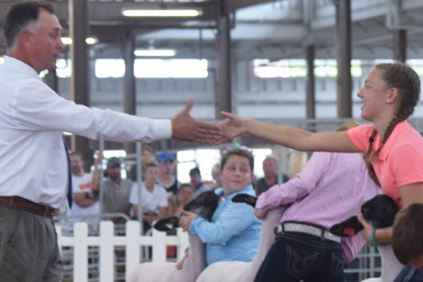 Kylee Johnson, Wayne Co., gets the handshake for Grade champion. She went on to win Grand Champion.