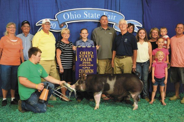The Champion Berkshire exhibited by Paige Pence of New Carlisle sold to Huntington Bank, Nationwide Insurance, Grandma and Grandpa Pence, Eichorn Showpigs, and Lynn Alan Farm for $3,300.