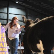 The Grand Champion Market Beef was exhibited by Brooke Egbert of Auglaize County and sold to Steve Rauch Excavation and Demolition for $45,000.