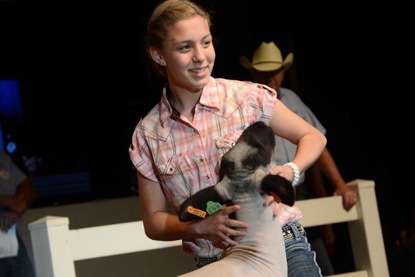 The Grand Champion Market Lamb was exhibited by Kylee Johnson of Wayne County and sold to Kroger for $23,000.