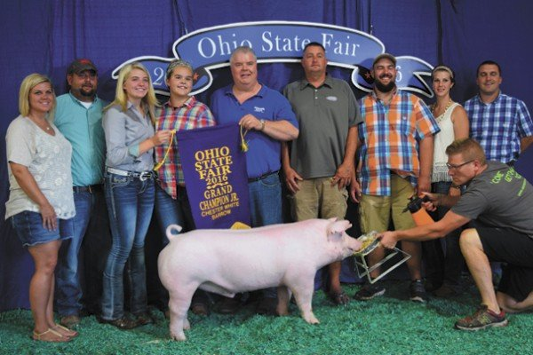 The Champion Chester White exhibited by Lily Rees of Bidwell sold to Feed Stop— Brian Unroe, Foster Sales, Bob Foster, Letart Corp., Bodimer Brothers Show Pigs, State Representative Ryan Smith, Joe Foster, and Ohio Valley Showpigs for $2,550.
