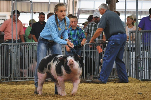 Saylor Moore, Washington Courthouse shows her Reserve Grand Champion Spotted market barrow