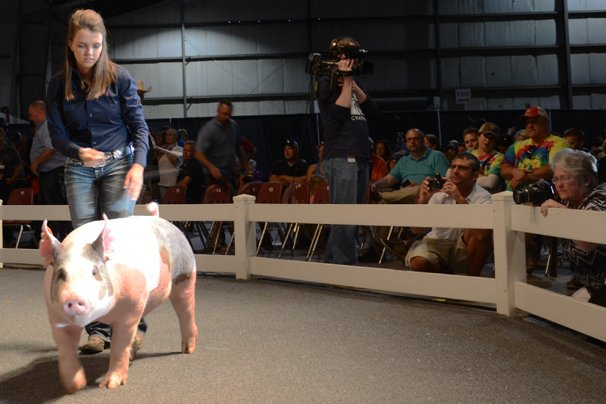 The Reserve Champion Barrow was exhibited by Lea Kimley of Clark County and sold to Meijer for $30,000.