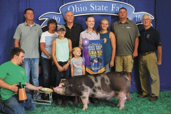 The Champion Spot exhibited by Saylor Moore of Washington Courthouse sold to the Ohio Spot Association, Huntington Bank, Nationwide Insurance, Dave Campbell Insurance, County View Pet Hospital, and Thompson Show Feeds for $2,800.