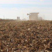 Heitkamp Farms Feeding Farmers Corn Harvest Combine