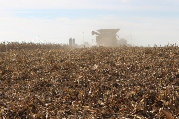 Heitkamp Farms Feeding Farmers Corn Harvest Combine