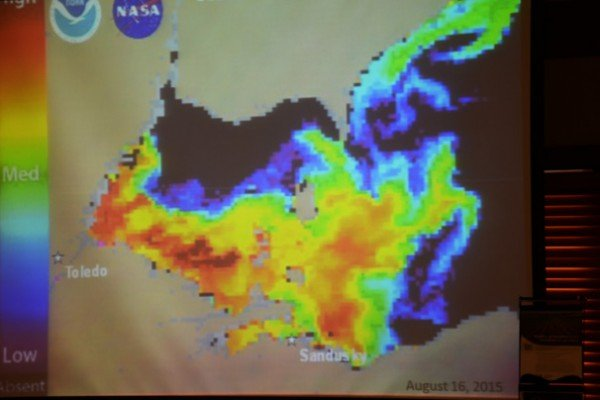 A series of maps in Spangler's presentation showed mycrocystis levels in Lake Erie on different dates. This is in August of 2015.