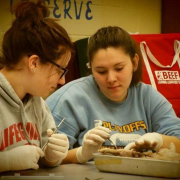 Ridgedale FFA pig dissection